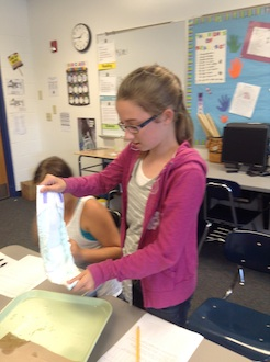 The 6th grade class did an experiment to learn how many milliliters of water a diaper could hold.  (Photo submitted.)