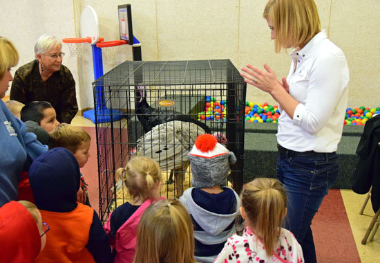 Cassie Jo Arends (standing, right) talks to children at Wee Care Learning Center on Thursday while the kids view a Spanish black and slate blue turkey brought in for the presentation. (Dave Mosier/Van Wert independent)