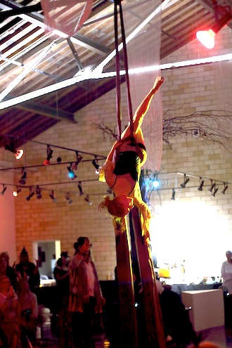 Performer Samantha Eve Marie of Fort Wayne, Ind., performs a silk aerialist routine during Dr. Wassenstein's Freak Haus, the Wassenberg Art Center annual Halloween party in 2014. (Photo submitted.)
