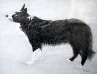 Collene Hitchcock of Antwerp won first place with a series of graphite drawings.  (Photo submitted.)